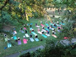 people doing yoga on a park lawn